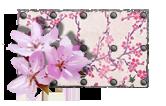 Краска Сакура